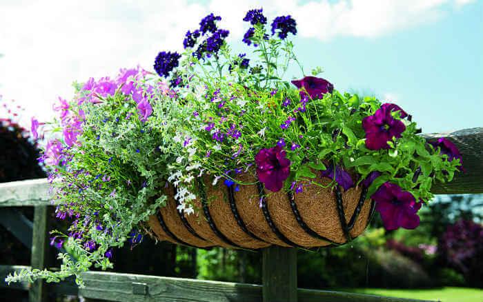 cestos colgantes para jardin