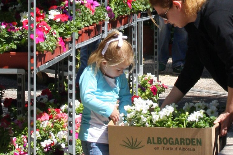 comprar plantas de calidad